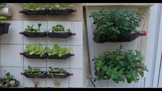 Como Fazer uma Horta com Garrafas Pet, passo a passo