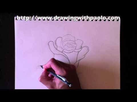 Dessiner une Rose avec Paolo Morrone
