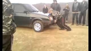 getlinkyoutube.com-Сильный,это вот как!Чеченец легко поднимает машины