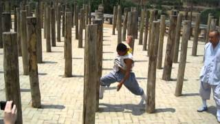 getlinkyoutube.com-chinese kung fu for shaolin wooden dummy