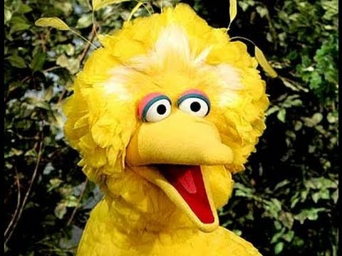 President Obama, Big Bird, PBS, Clear Winners In Presidential Debate; Mitt Romney Was Rope-A-Doped