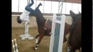 getlinkyoutube.com-Horse falls and fails ... Ouch !