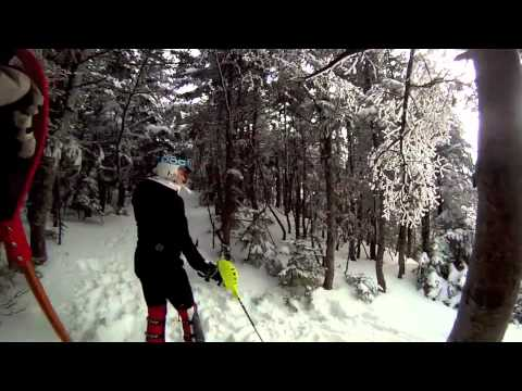 Harvard Alpine Skiing