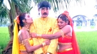 Nava Manmadhuda Full Video Song    Pelli Sandadi Movie    Srikanth, Ravali, Deepthi Bhatnagar