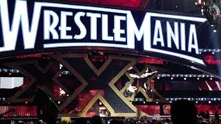 PICKLEBOY GOES TO WRESTLEMANIA XXX