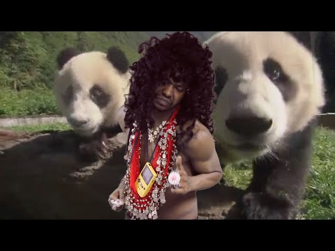 Panda Pizza music video by Paperboy Prince of the Suburbs