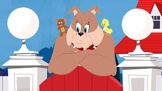 Tom and Jerry Cartoon Halloween Full Movie 2016 PART 2