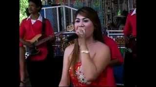 getlinkyoutube.com-Janda Bodong - Maya Amelia - Nada Ayu Dangdut Pantura