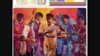 Tarika - Raitra (Big Island Radio Remix) 10: Beasts, Ghosts And Dancing With History (Madagascar)