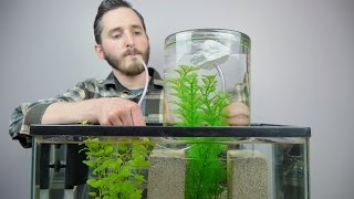 getlinkyoutube.com-Make A Vacuum Suspended Fish Tank