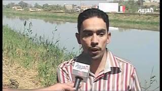 """getlinkyoutube.com-لأول مرة، تمساح """"النيل"""" يظهر في نهر الديوانية"""