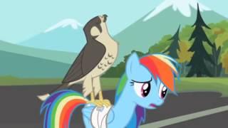 getlinkyoutube.com-My little pony friendship is magic: May The Best Pet Win