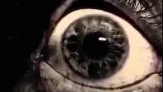 getlinkyoutube.com-Aliens Among Us (Real Videos)