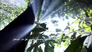 getlinkyoutube.com-دعاء الصباح بصوت الملا محمد جلاوي