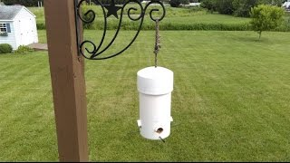 Cheap & Easy Small Birds Feeder Squirrel & Big Grackle Proof PVC Pipe.