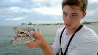 getlinkyoutube.com-The Actual Fishing Challenge -- Ft. BlackTipH