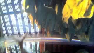 mqdefault Sex Machine James Mario Baiano Brown  Unoesc Xxe. Share video → Tweet