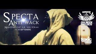 Specta - Anti Wack