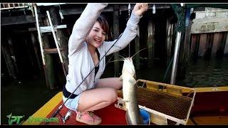 getlinkyoutube.com-Catfish fishing ตกปลาหน้าดินแม่น้ำเจ้าพระยา กินกระจาย by fishingEZ