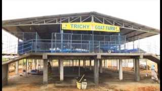 getlinkyoutube.com-Trichy Goat Farm