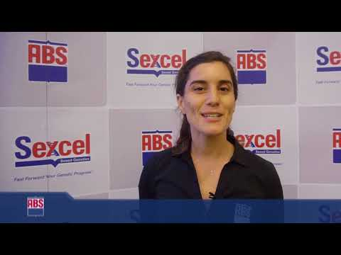 SEXCEL - Equipo ABS CHILE 01