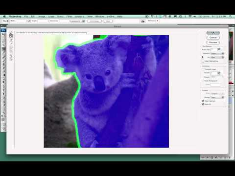 Photoshop - Extract Filter (Selection Tool)