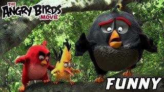 Angry Birds Movie 2016 Funny Commercial