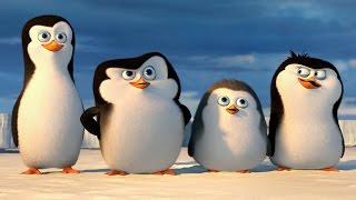 "getlinkyoutube.com-ПИНГВИНЫ МАДАГАСКАРА - ""Пингвины Антарктики"" - РОССИЯ"