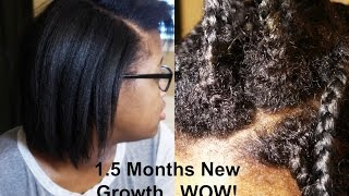 getlinkyoutube.com-Update 1.5 Month New Growth | Healthy No Knot Box Braids Natural 4C Hair