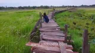 getlinkyoutube.com-ท่องเที่ยวสะดุดตา | พาไปเดินข้ามสะพานไม้แกดำ สะพานไม้บ้านทุ่งข้ามหนองน้ำใหญ่