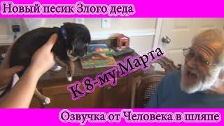 getlinkyoutube.com-ЗЛОЙ ДЕД И НОВЫЙ ПЕСИК. РУССКАЯ ОЗВУЧКА