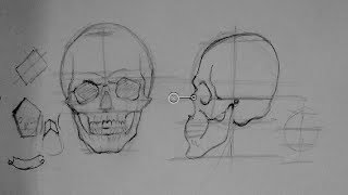 getlinkyoutube.com-Drawing Human Anatomy & Head Proportions | How to Draw a Reaslistic Skull Step by Step