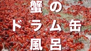 getlinkyoutube.com-【閲覧注意】死ぬ程怖い話 『蟹風呂』