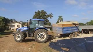 getlinkyoutube.com-Silagem de milho 2 - Cotiporã 2015