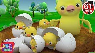 getlinkyoutube.com-Five Little Birds | + More Nursery Rhymes & Kids Songs - ABCkidTV