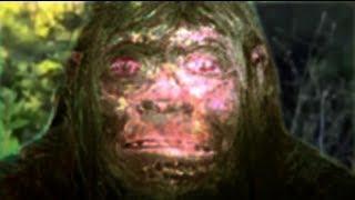 getlinkyoutube.com-The Last Living Neanderthal (Russian Bigfoot)