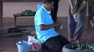 getlinkyoutube.com-การปลูกผักในล้อยางรถยนต์