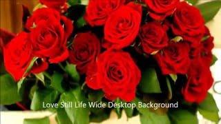 getlinkyoutube.com-أجمل صور تعبر عن الحب