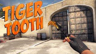 getlinkyoutube.com-CS:GO - Karambit (Tiger Tooth) Gameplay