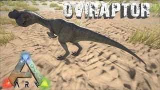 getlinkyoutube.com-Ark Survival Evolved - Oviraptor - Useful or Disappointing?