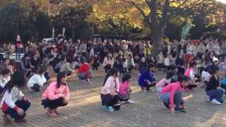 getlinkyoutube.com-代々木公園 フラッシュモブ公開プロポーズ大作戦!Flashmob proposal at Yoyogi Park in Japan
