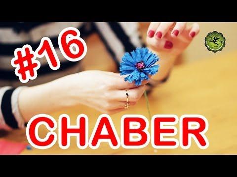 Kwiatki z bibuły #16 - chaber