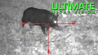 Monster Hog with the Sightmark Photon XT Digital Night Vision Scope