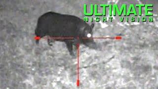 getlinkyoutube.com-Monster Hog with the Sightmark Photon XT Digital Night Vision Scope