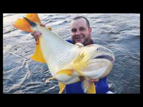 Pescaria de dourado guaira !