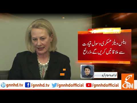 US envoy Alice Wells reaches Pakistan on 5-day official visit