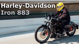 getlinkyoutube.com-Harley-Davidson Iron 883 - la más vendida de la firma en México | Autocosmos