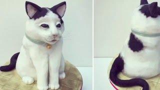 getlinkyoutube.com-3d Cat Cake - How to make a Cat Cake