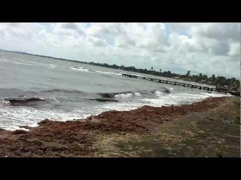 Malecón – Juana Díaz – Puerto Rico – Video II