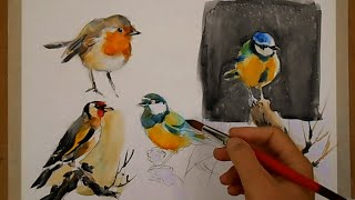 getlinkyoutube.com-WATERCOLOR-PAINTING BIRDS-PINTANDO PÁJAROS